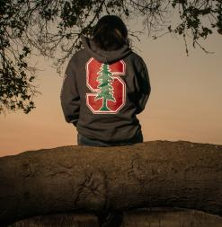 Student wearing Stanford sweater sitting at Lake Lagunita on Stanford campus.